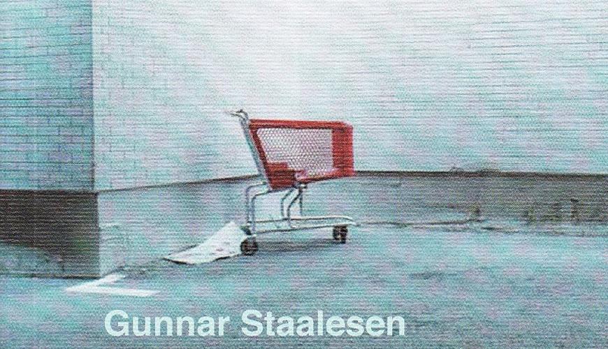 Gunnar Staalesen La donna nel frigo